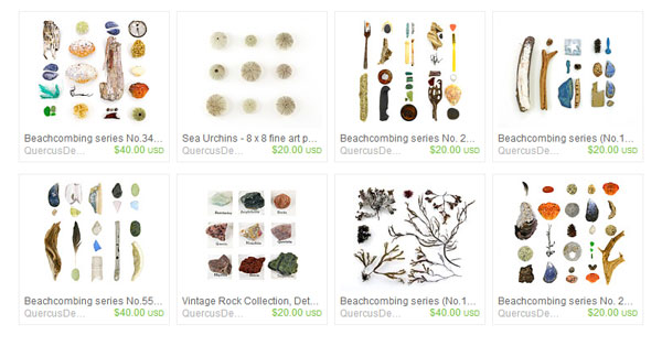 Quercus Designs by Jennifer on Etsy