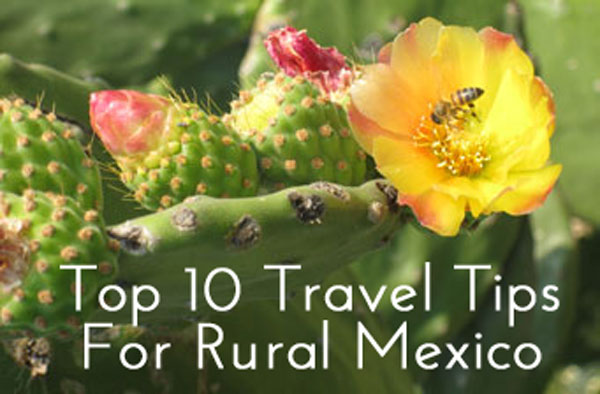 Click through to get your free report on my Top 10 Travel Tips for Rural Mexico