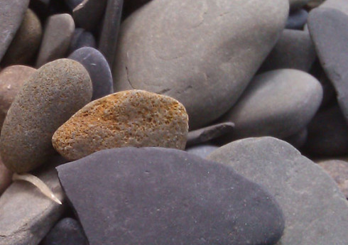 Slate beach stone from the Finger Lakes in upstate NY