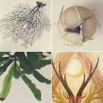 Things that branch (including a new painting by Jenny Hoople of Authentic Arts!)